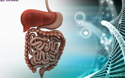 Was verbindet den Darm und das Hirn? Die faszinierende Darm-Hirn-Achse
