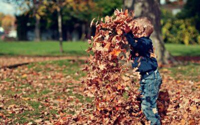 Neue Erkenntnisse über Ursachen von Autismus