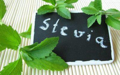 Stevia: natürlicher Zuckerersatz: Lösung für Diabetes, Bluthochdruck und Übergewicht