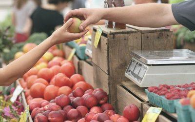 Fructose schaltet bei den Menschen die Harnsäure-Produktion ein